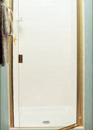 frameless shower door with swinging door
